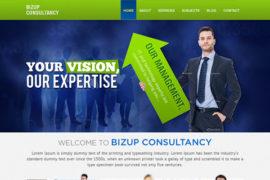 Bizup Consultancy